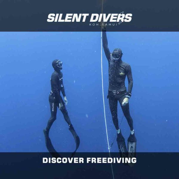 Discover Freediving Koh Samui