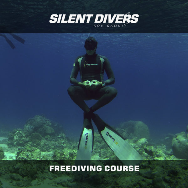 Freediving Course en Koh Samui