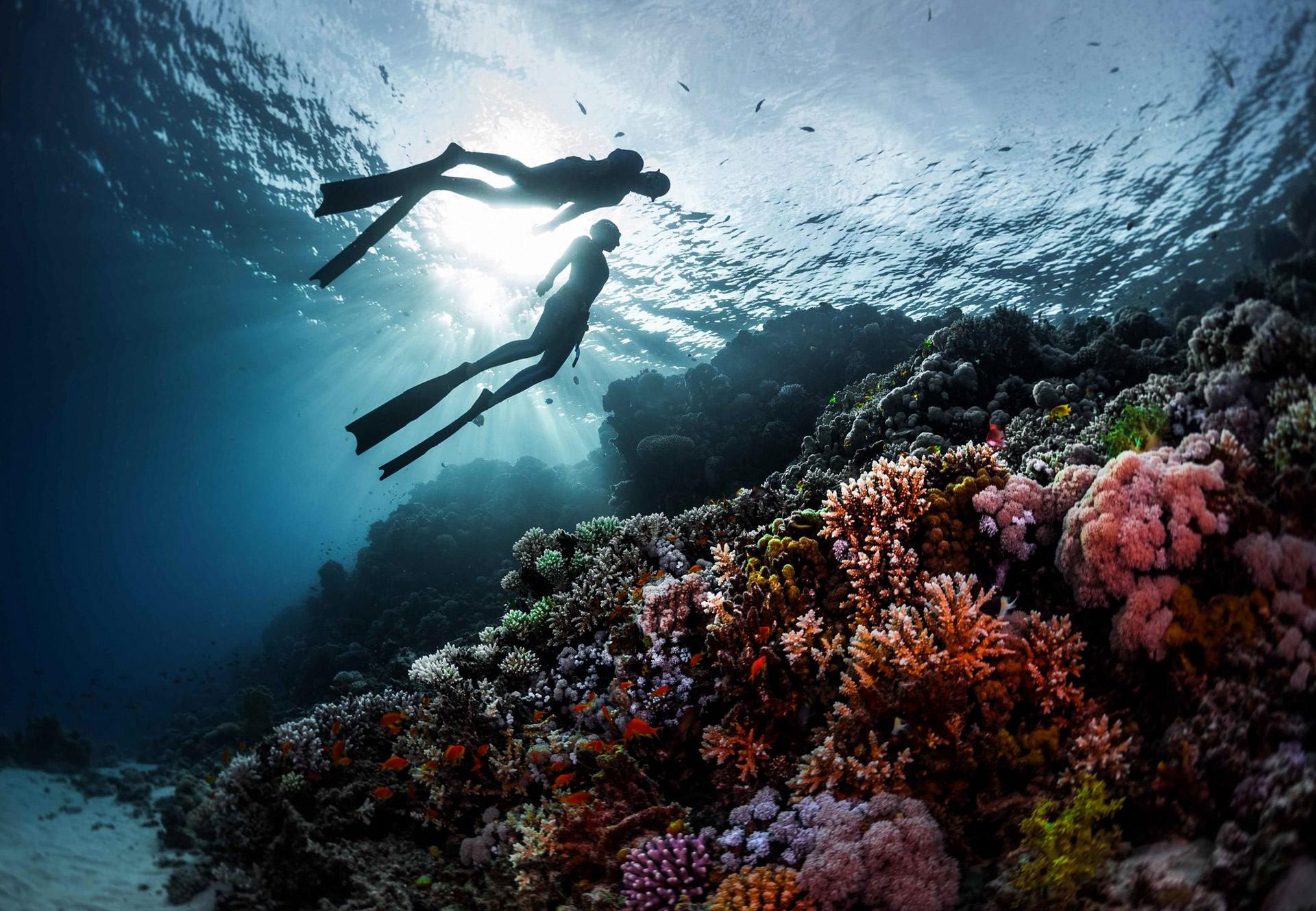 Freediving Koh Samui
